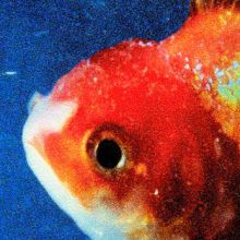 Vince-Staples-Big-Fish-Theory